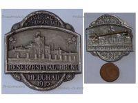 Austria Hungary WW1 Reserve Hospital Brcko Belgrade 1915 Cap Badge Red Cross Patriotic WWI Great War 1914 1918 Austro Hungarian Empire