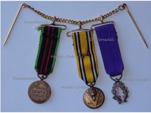 Belgium France WWII Set of 3 Medals (Belgian Armed Resistance & Commemorative Medal with Swords, French Order Academic Palms Knight's Badge)