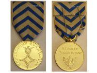 France North Africa Medal