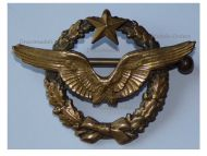 France Pilot Wings Badge French Air Force Indochina War 1946 1954 Numbered