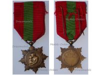 France WWI Bronze Medal for the French Families 1920 by the Ministry of Hygiene