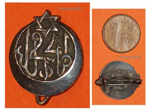 France WW1 24th Tunisian Rifle Regiment pin badge French 1914 1922 Colonial Infantry Great War WWI