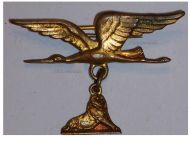 France WWI French Air Force Wings & Lion of Belfort Patriotic Badge by Augis