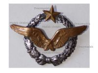 France WWI1 Pilot Wings Badge French Air Force 1914 1918 Numbered