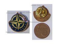 NATO ARO ARNS Badge Lapel Pin of the International Association Former or Retired Civilian Staff
