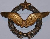 French Military Insignia & Pins
